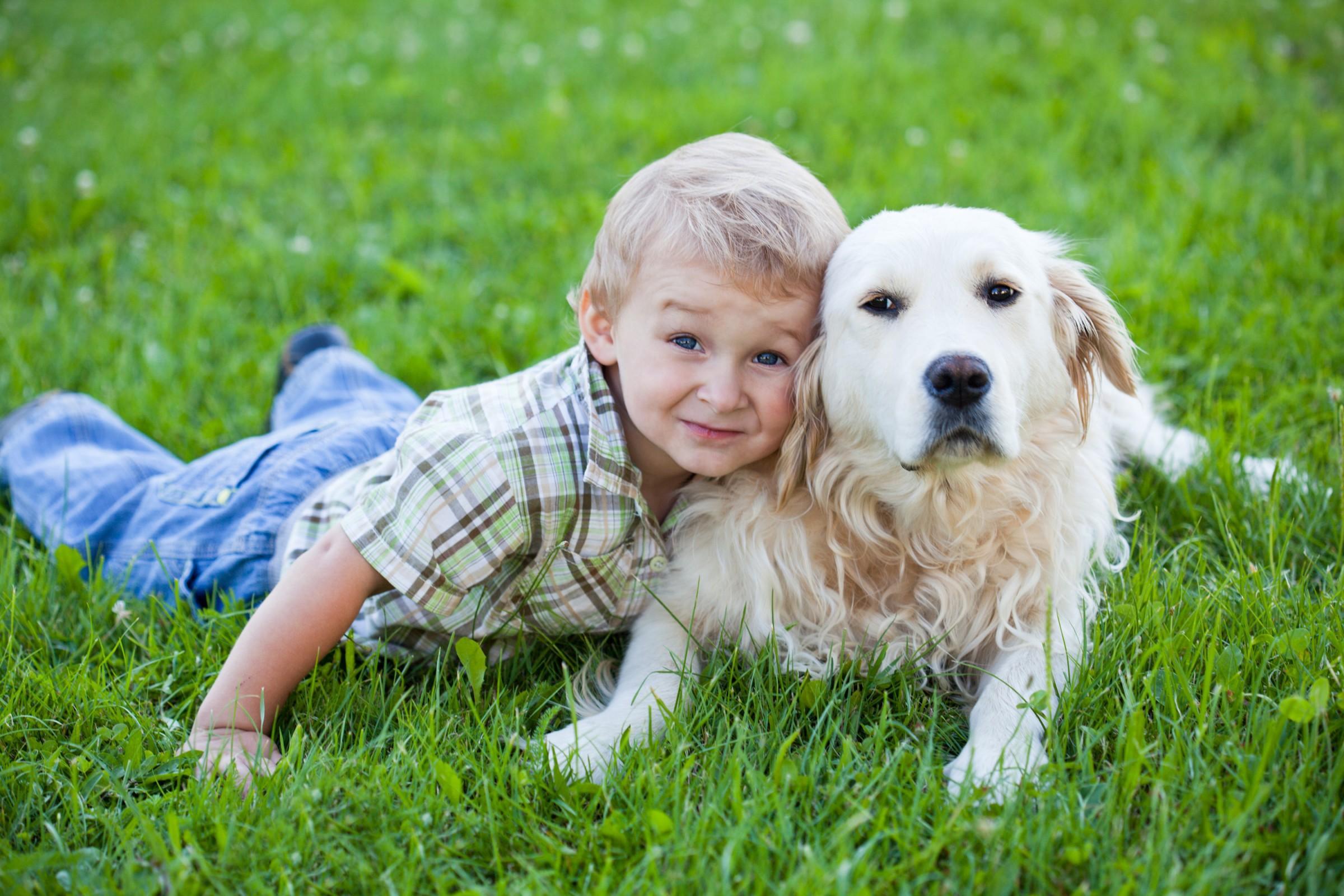 Kutyatartas-kisgyerek-mellett